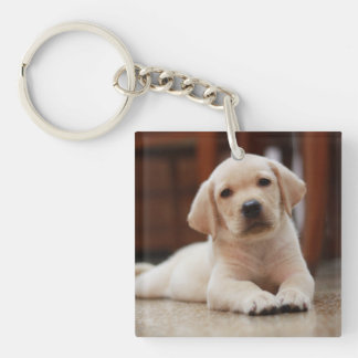 Baby Yellow Labrador Puppy Dog laying on Belly Double-Sided Square Acrylic Keychain