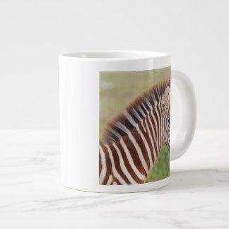 Baby zebra head, Tanzania Large Coffee Mug