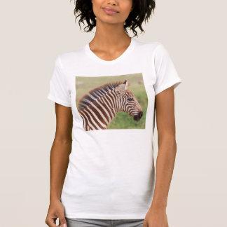 Baby zebra head, Tanzania T-Shirt