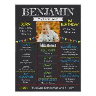 Baby's First Birthday Photo Poster