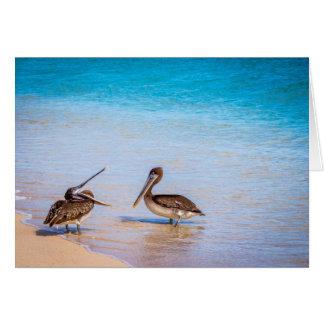 Bachas Beach Pelicans Card
