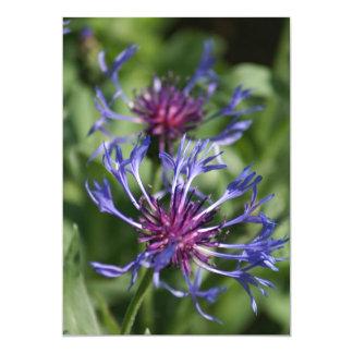 Bachelor Button Flower Invitation