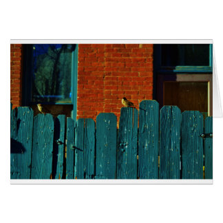 Back Alley Birdwatching Greeting Card