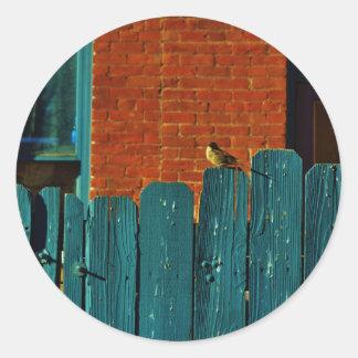 Back Alley Birdwatching Round Sticker