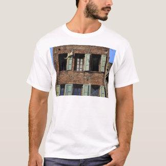 Back Alley Windows T-Shirt