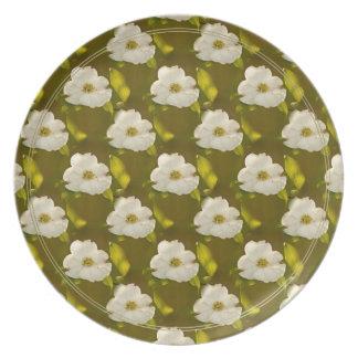 Back-lit Dogwood Blossom Wallpaper Plates