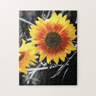 Back-lit Sunflower in B&W Puzzle