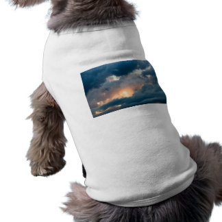 back to the early show pet t-shirt