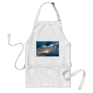 back to the early show standard apron