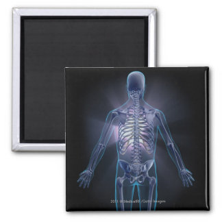 Back view of a human skeleton square magnet