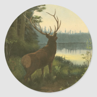 Back view of Elk Looking over a Lake Classic Round Sticker