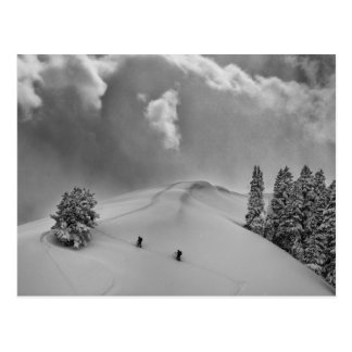 Backcountry Ski Climbers in fresh powder Postcard