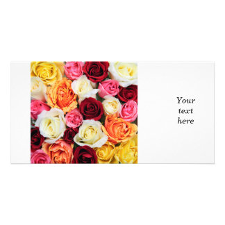 Background of rose blossoms photo greeting card