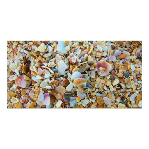 Background of Small Colorful Seashells Photo Card