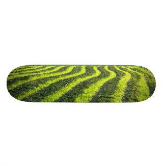 Backlit farmland skate board deck