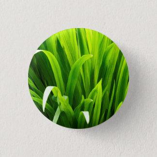 Backlit Leaves in Garden 1 Inch Round Button