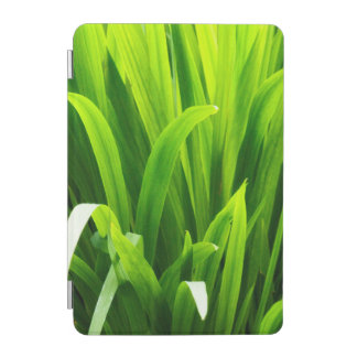 Backlit Leaves in Garden iPad Mini Cover