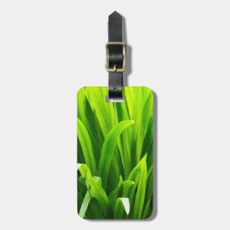Backlit Leaves in Garden Luggage Tag