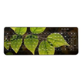 Backlit Leaves Wireless Keyboard