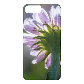 Backlit Purple Wildflower With Dewdrops iPhone 7 Plus Case
