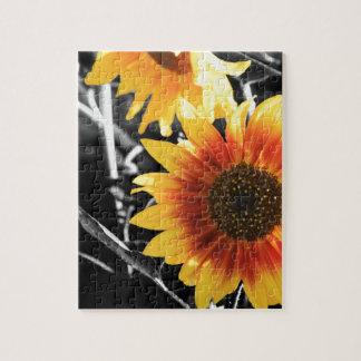 Backlit Sunflower with B&W Jigsaw Puzzle