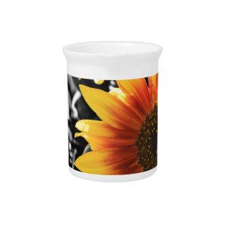 Backlit Sunflower with B&W Pitcher