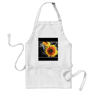 Backlit Sunflower with B&W Standard Apron