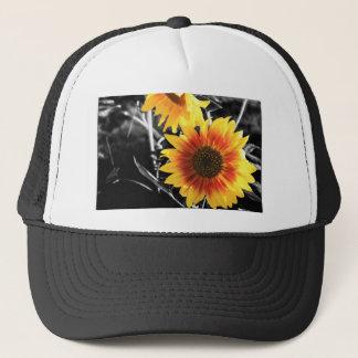 Backlit Sunflower with B&W Trucker Hat