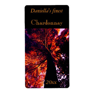 Backlit tall old tree wine label shipping label