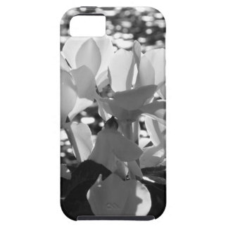 Backlits white cyclamen flowers on dark background case for the iPhone 5