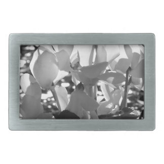 Backlits white cyclamen flowers on dark background rectangular belt buckles