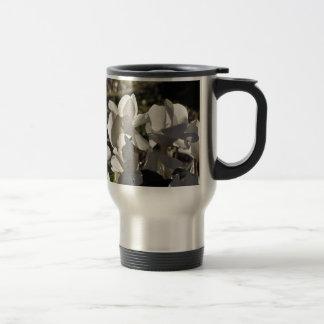 Backlits white cyclamen flowers on dark background travel mug