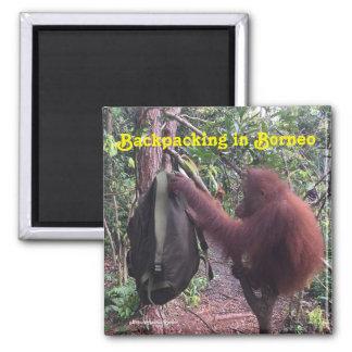 Backpacking Borneo Orangutan Magnet