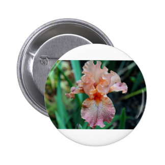 Backseat Promise 2 Inch Round Button