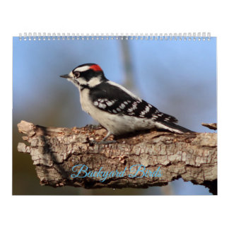 Backyard Birds, Calendar