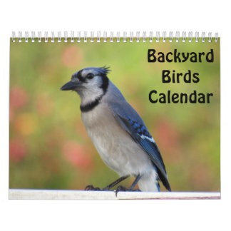 Backyard Birds Calendar (New for 2018)