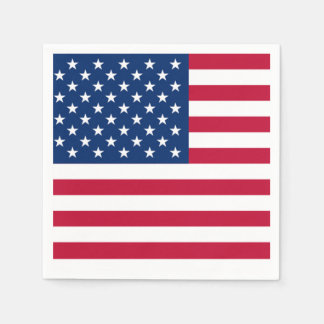 Backyard Gathering Memorial Day Party Paper Napkin