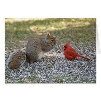 Backyard Gossip Card