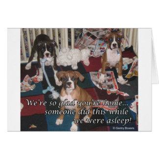 Bad boxer puppies card