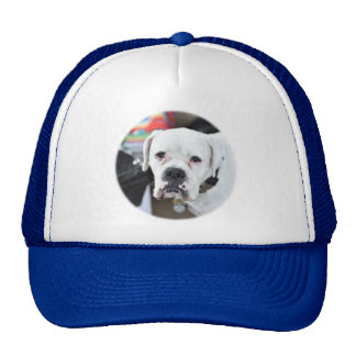 Bad Boxer Trucker Hat