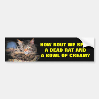 Bad Cat Pick Up Lines Bumper Stickers