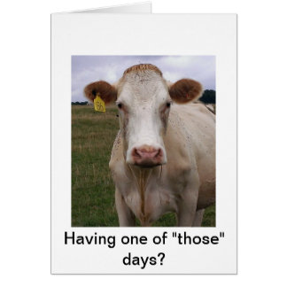 Bad Day Cow Card