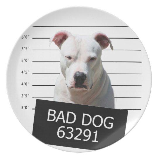 Bad dog dinner plate