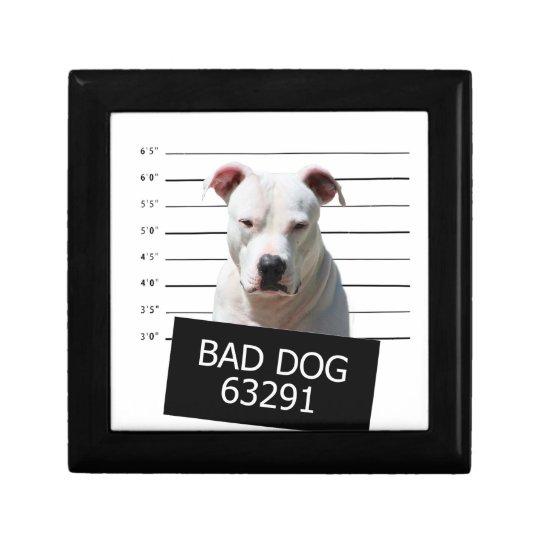 Bad dog trinket boxes