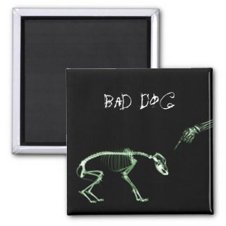 Bad Dog X-ray Skeleton in Green Magnet