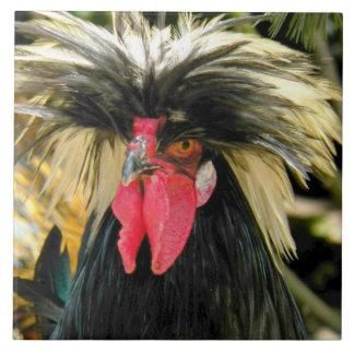 Bad Hair Chicken Photo Tiles