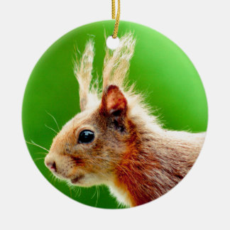 Bad hair day squirrel ceramic ornament