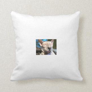 Bad Ice Cube Pillow