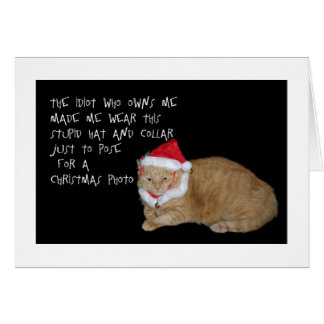 Bad Santa Fat Cat Christmas Card