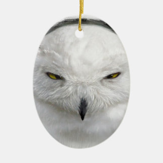 bad-tempered snowy owl ceramic oval ornament